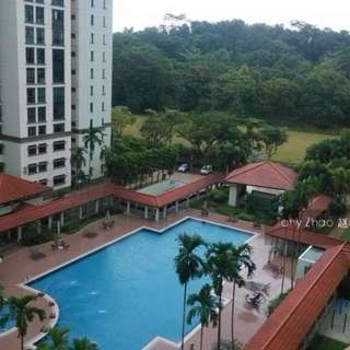 Newly Renovated Condo Room for rent