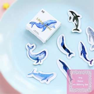 45pcs Whale Loose Sticker Pack