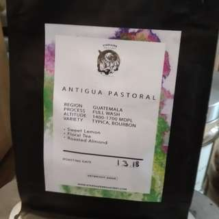 Beans Antigua Pastoral (Roasted)