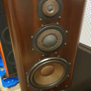 Diatone DS1000ZA speakers with stand