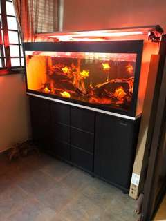 Fish Tank only