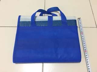 New Picnic Mat (Blue and White)