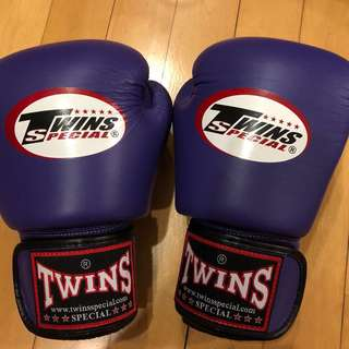 Twins 10oz muay thai/boxing gloves (lightly used)