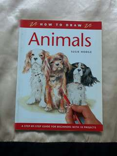 HOW TO DRAW ANIMALS by Susie Hodge