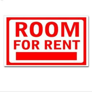 Room For Rent 普通房出租