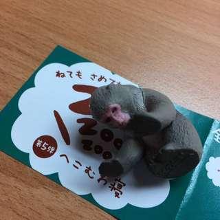 🚚 休眠動物5 猴子