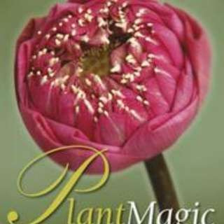 Plant Magic Auspicious and Inauspicious Plants from Around the World [New, Softback]