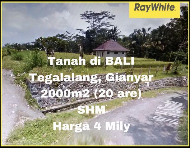 Dijual Tanah 20 are (2000m2) di BALI