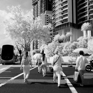 Rent Infrared Nikon DSLR with lens and filters