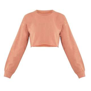 Peach Nude Cropped Sweatshirt