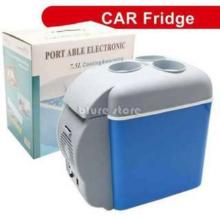 Portable car cooler