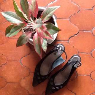 Pointed toe heels dress shoes or office shoes