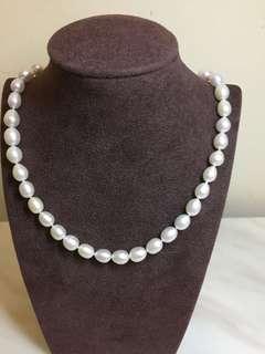 天然淡水珍珠