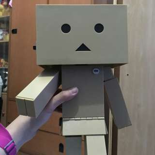 Limited Edition Danboard Figure