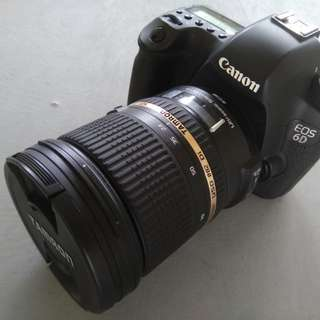 Canon 6D (Mark I)$1200