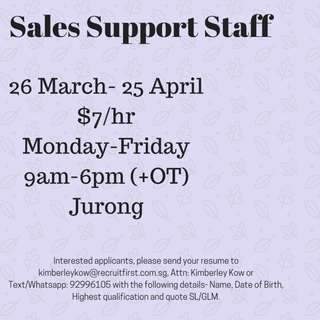 Sales Support Executive