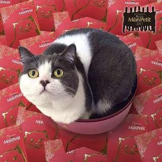日本 MonPetit 貓罐頭 貓貓 利事封 * 10個