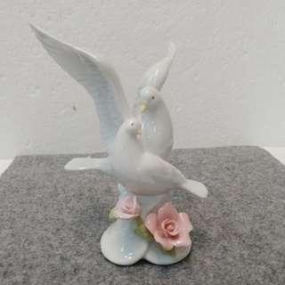 Cosmos 白瓷天鵝