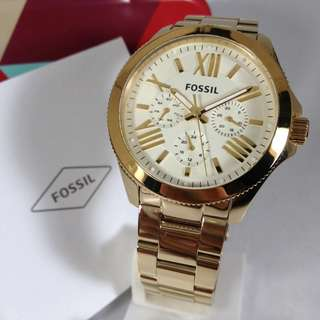 FOSSIL Cecile Ladies Watch AM4510