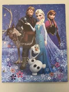 Frozen Vinyl Portfolio Folder