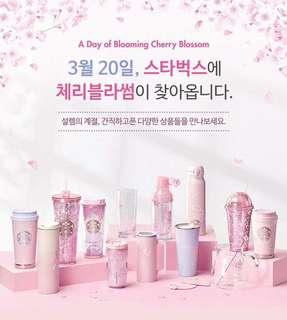 Starbuck Korea blossom