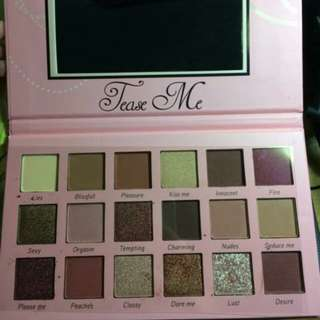 Beauty creation tease me eyeshadow palette