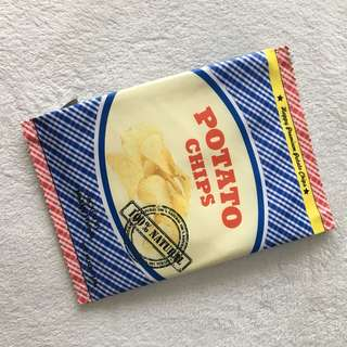 ZARA potato chip bag clutch