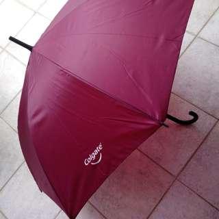 BNIP Sturdy Long Burgundy Umbrella from Colgate