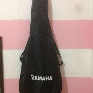 Akustik gitar (blue edition)