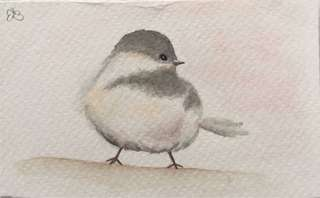 Bird Watercolour Painting