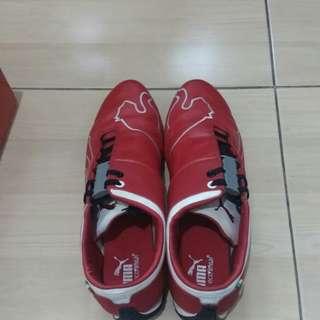 Puma shoes original