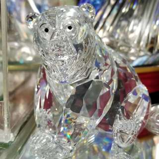 Swarovski Grizzly Bear