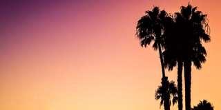 Coachella - Week 1 inc. shuttle x 2 tickets available