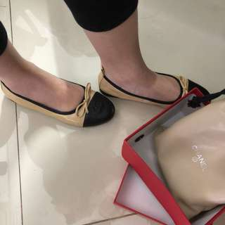 flat shoes two colour