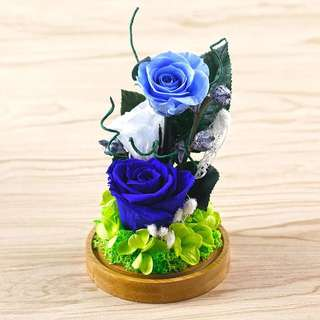 Terrarium / Preserved flowers / rose / presents / gifts / Mother's Day /