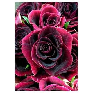 Fully Beaded Rose