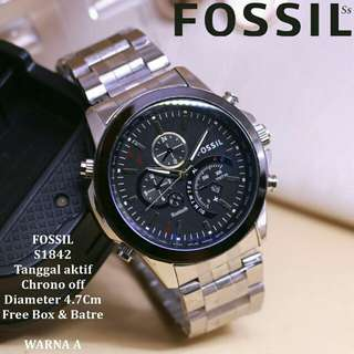 Fossil S1842