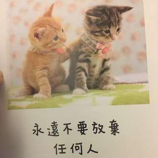 二手書(愛貓人士可收藏)