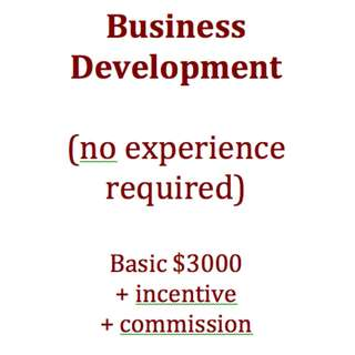 Business Development (no exp) Singaporeans only