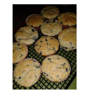 Blueberry Cupcakes (6s or 12s)