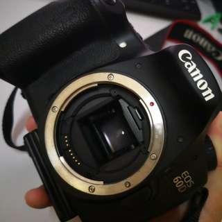 CANON 60D & TAMRON 1750/2.8