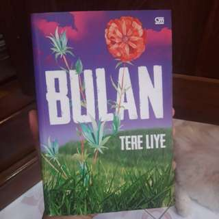 Novel Tere Liye Bulan