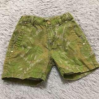 Pre💕Authentic PUMPKIN PATCH Shorts