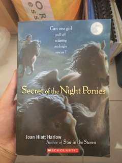 Secret of the Night Ponies by Joan Hiaat Harlow #bajet20