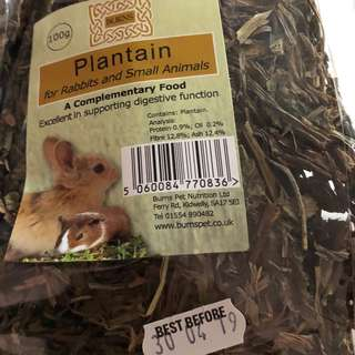 Burns Plantain herb for rabbits and other pets