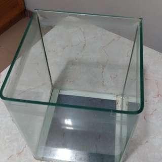 玻璃魚缸 6 x 6 1/2 x 8 1/2吋