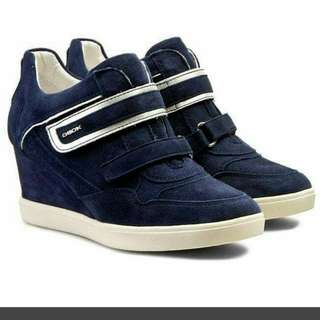 Geox sweater shoes