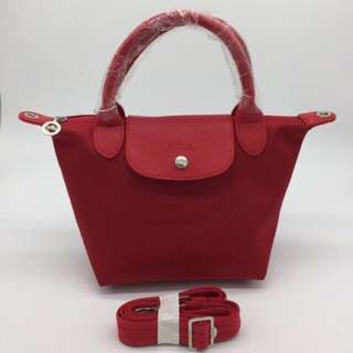 PRE ORDER! Longchamp small size