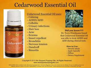 15ml Cedarwood Young Living Essential Oil