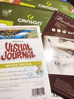 Canson, Berkeley watercolor pads, and Stratmore Visual Journal (bundled)